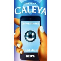 Caleya Surveillance Capitalism