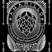 Espiga Hop Collection Series Amarillo
