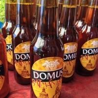 domus-salmantica_138515701755