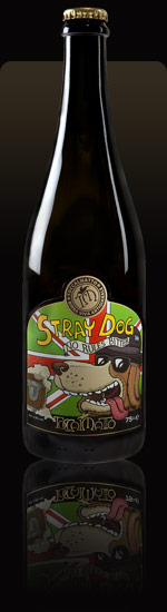 toccalmatto-stray-dog