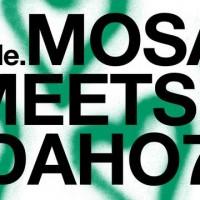 Soma Double Mosaic Meets Idaho 7