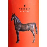 garage-beer-co---wylam-trouble_15555818634181
