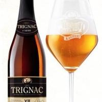 kasteelbier-trignac-luxe_14526818606782