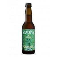 Caleya Fractal Gamma