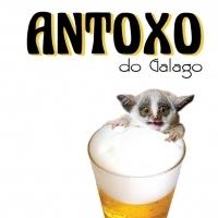 antoxo-do-galago_13902942142485
