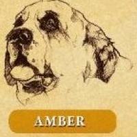 Las Trancas Amber