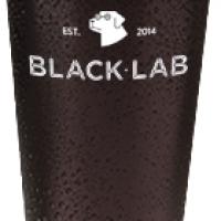 Blacklab Good Morning