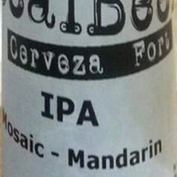 fort-local-beer-ipa-mosaic-mandarin_14222753755832