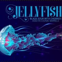la-calavera-jellyfish_15481541174858