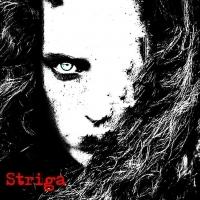 striga_13912073761336
