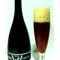 tierra-vettona-scotch-ale_14151199299294