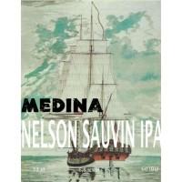 Medina Nelson Sauvin IPA