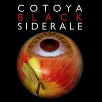 cotoya-black-siderale_1500026676165