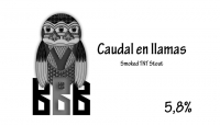 nox-caudal-en-llamas_14059291313025