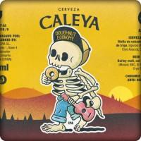 Caleya Doughnut Economy