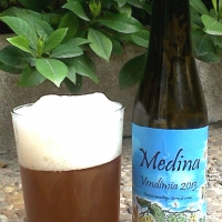 medina-vendimia-2013_14431672724265