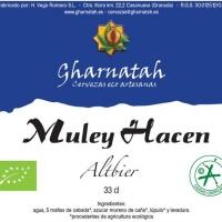 gharnatha-muley-hacen_14379969496275