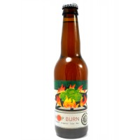 mikkeller-hop-burn-high_146843038506