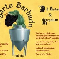 lagarto-barbudo_14274597458323