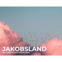 Jakobsland On Cloud 9