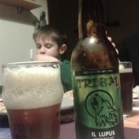tribal-il-lupus_1391841283735
