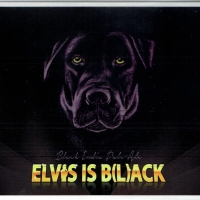 la-petra-elvis-is-b-l-ack-_14220531225107