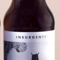 insurgente-nocturna_14540837437422