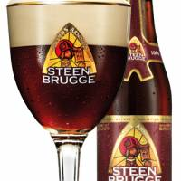 Steenbrugge Dubbel Bruin