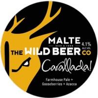 Wild Beer / Malte Carallada
