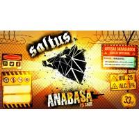 Saltus Anabasa