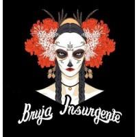 bruja-insurgente_14803361886542
