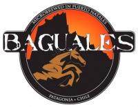 https://birrapedia.com/img/modulos/empresas/15c/cerveceria-baguales_p.jpg