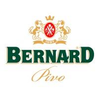 Bernard Family Brewery Light Lager (Světlé Pivo 10)