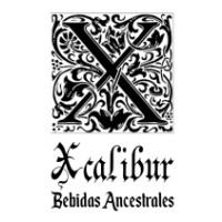 Xcalibur Bebidas Ancestrales Tropical - Mango Y Vainilla